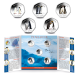 British Antarctic Territory Penguins 50p Series: Complete Set with Album - 2019