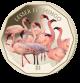 Flamingos Series: Lesser Flamingo - 2019 Coloured Virenium 1 Dollar Coin