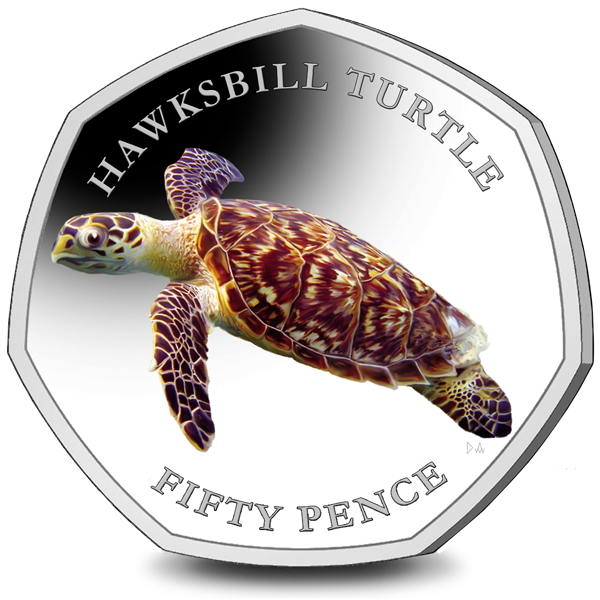 The 2nd Coin in the 2019 50p Turtles Series is Out Now